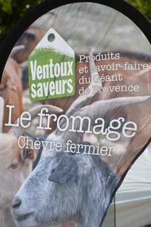 Savoillans - Eleveurs en Ventoux - Edition 2018